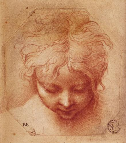 Study of a Head by Parmigianino