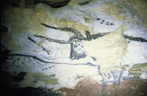 Rock painting of a bull with long horns the Hall of Bulls by Anonymous