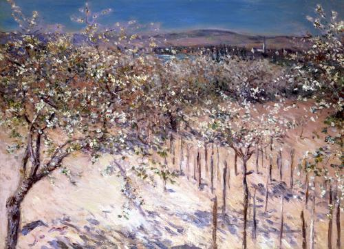 Orchard with Flowering Apple Trees Colombes by Gustave Caillebotte
