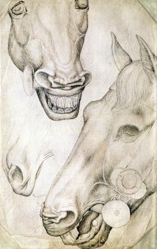 Heads of Horses by Antonio Pisanello