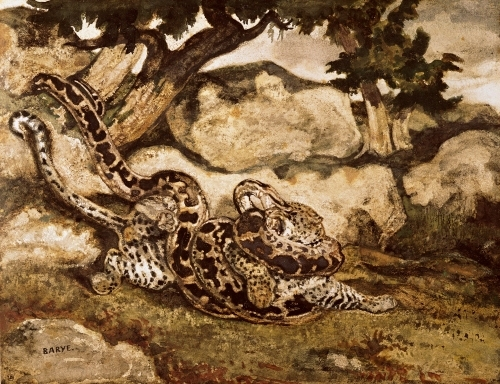A Python Killing a Tiger by Antoine Louis Barye