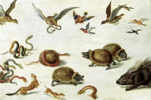 The Enemies of Snakes by Jan van Kessel