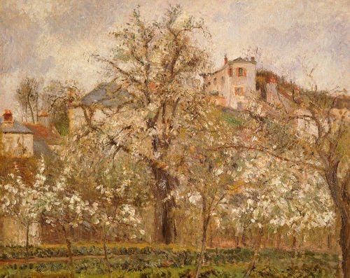 Kitchen garden with trees in blossom Spring Pontoise, 1877 by Camille Pissarro