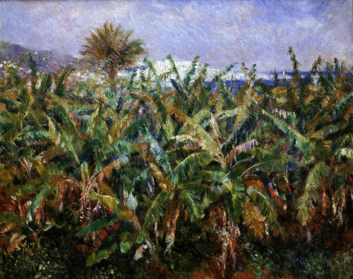 Field of banana trees, 1881 by Pierre Auguste Renoir