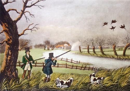 Snipe (Restrike Etching) by Robert Havell