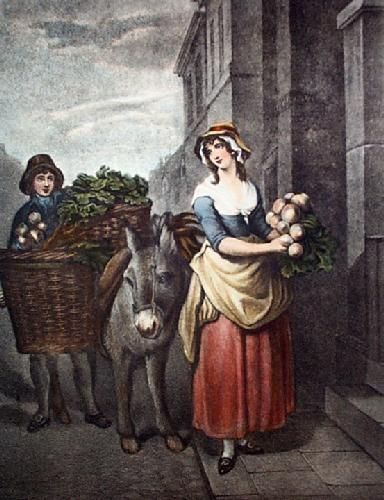 Turnips (Restrike Etching) by Francis Wheatley