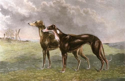 Honeywood & Plunger (Restrike Etching) by Walter Hunt