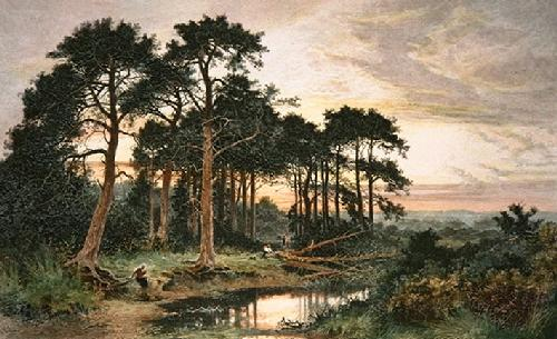 Surrey Pinewood (Restrike Etching) by Benjamin Williams Leader