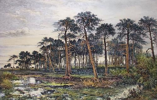 Normandy Pine Forest (Restrike Etching) by Camille Fonce