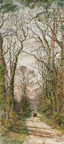 Pleasant Shady Lane (Restrike Etching) by Frederick Albert Slocombe