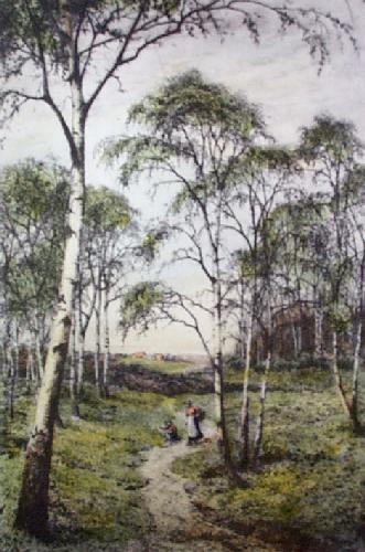Primrose Wood, The (Restrike Etching) by Frederick Albert Slocombe