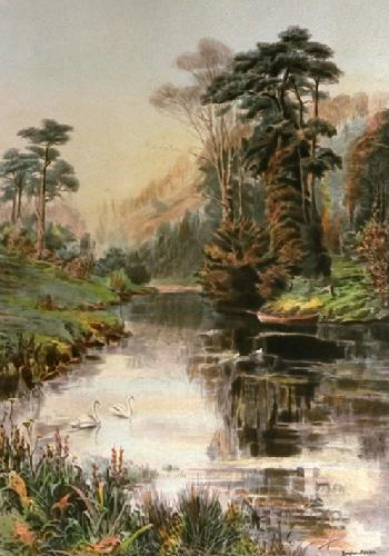Nature's Mirror (Restrike Etching) by Douglas Adams