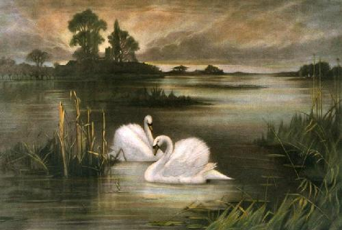 Lords of the Mere (Restrike Etching) by William Henry Davis