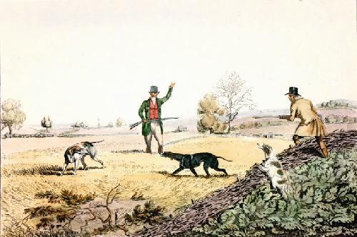 Partridge (Restrike Etching) by Henry Alken