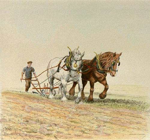 Ploughing - Plate 1 (Restrike Etching) by Graham Clilverd