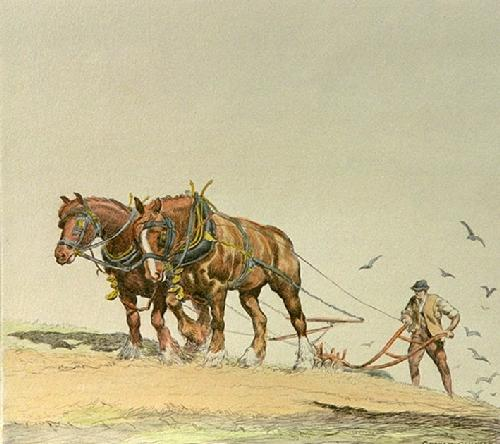 Ploughing - Plate 2 (Restrike Etching) by Graham Clilverd