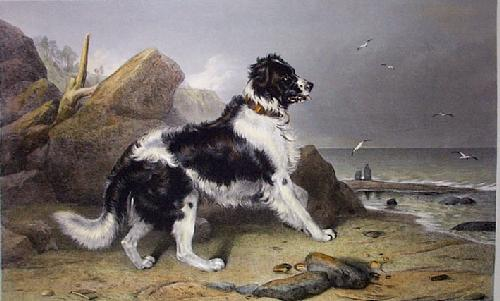 Off to the Rescue (Large) (Restrike Etching) by Sir Edwin Henry Landseer