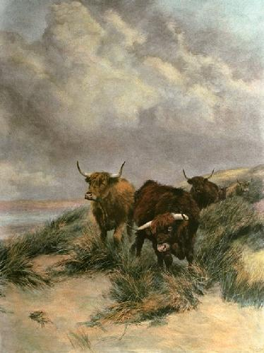 On the Dunes (Cattle) (Restrike Etching) by Peter Graham