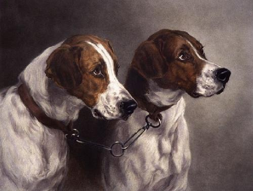 Pick of the Pack (Restrike Etching) by Heywood Hardy