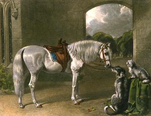 Lady's Palfrey (Restrike Etching) by John Frederick Herring