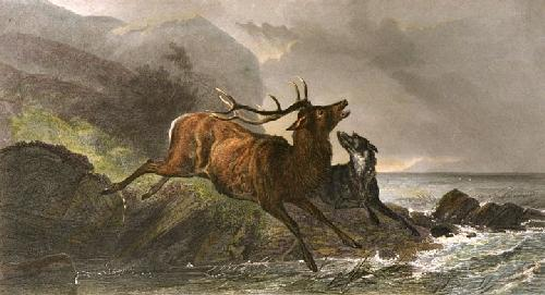 The Chase (Restrike Etching) by Richard Ansdell