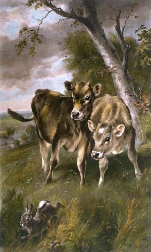 Startled (Calves) (Restrike Etching) by Walter Hunt