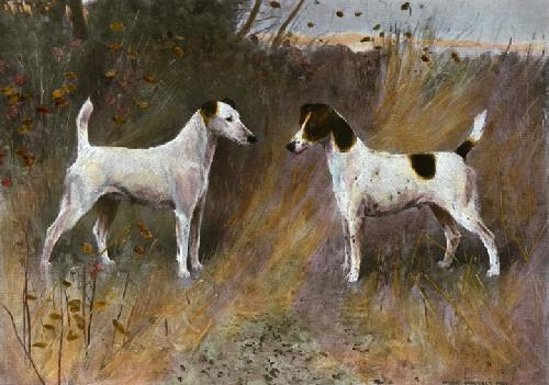 Rival Beauties (Restrike Etching) by Arthur Wardle