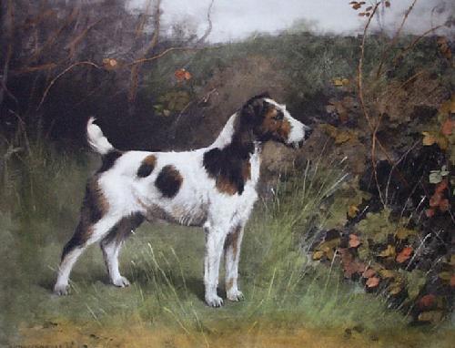 Meeresbrook Bristles (Restrike Etching) by Arthur Wardle