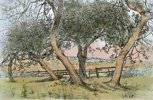 Withies in the Fields (Restrike Etching) by Robinson