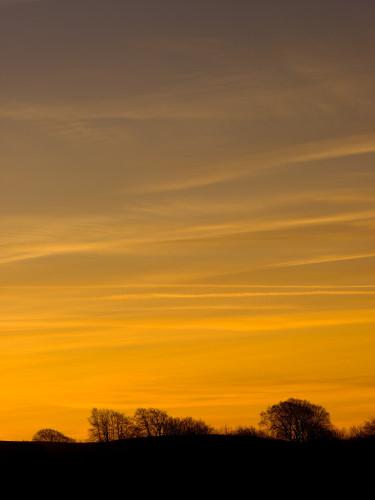 Field, sunrise, Haresfield Beacon by Assaf Frank