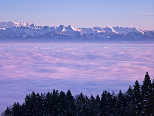 Mont Blanc above clouds, The Alps, France by Assaf Frank
