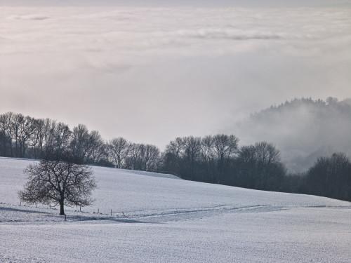 Snow Landscape by Assaf Frank