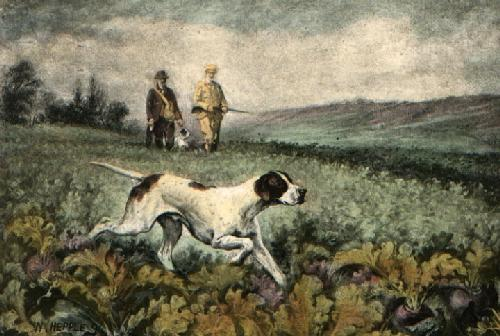 Through the Turnips (Restrike Etching) by Hepple