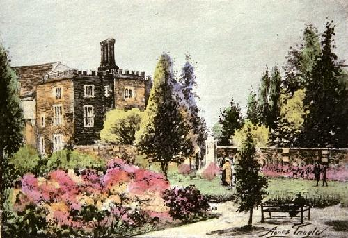 Azaleas, Hampton Court (Restrike Etching) by Agnes Pringle