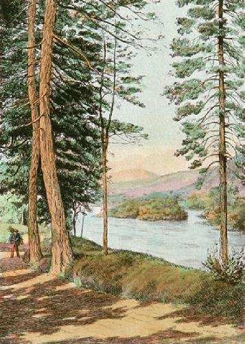 Wood Gatherer (Restrike Etching) by Anonymous