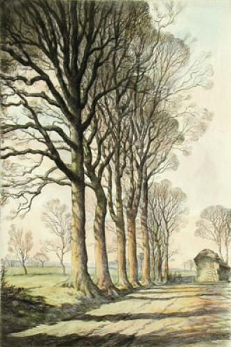 Autumn Shadows (Restrike Etching) by Graham Clilverd