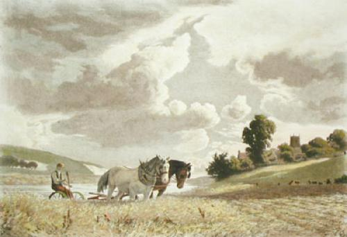 The Plough (Restrike Etching) by Anonymous