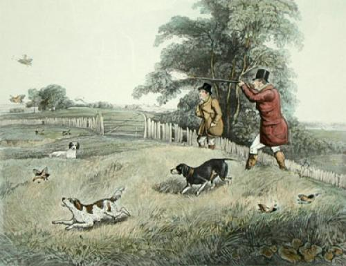Partridge Shooting PL. III (Restrike Etching) by Henry Alken