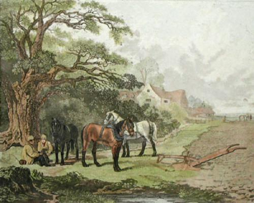 Spring Dearman (Restrike Etching) by John Dearman