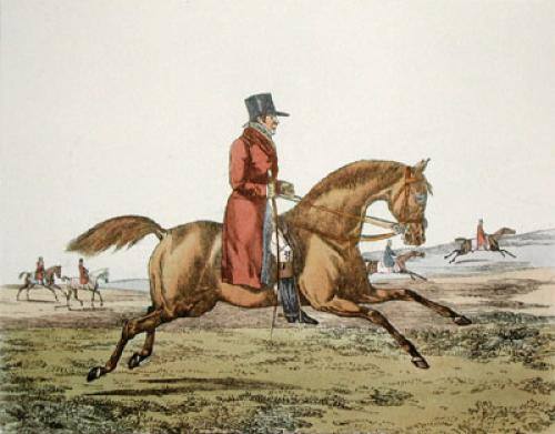 The Colt (Restrike Etching) by Henry Alken