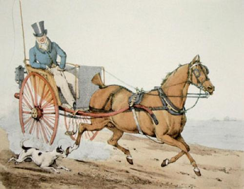 Harness Horse (Restrike Etching) by Henry Alken