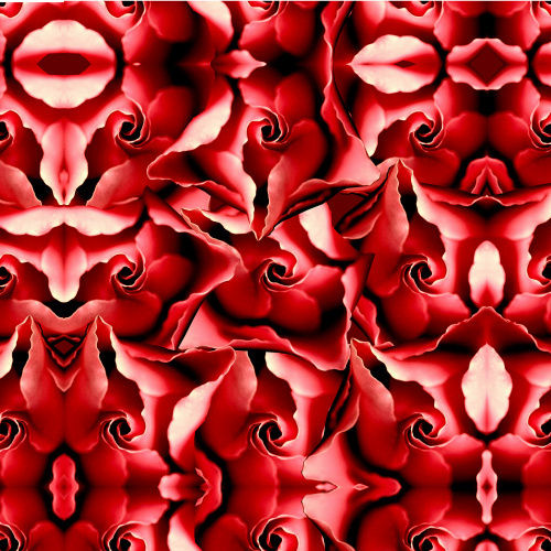 Red Velvet by Erin Rafferty