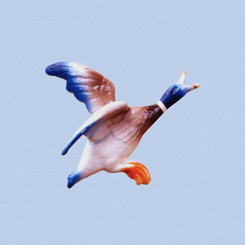 Flying Duck 1 by Erin Rafferty