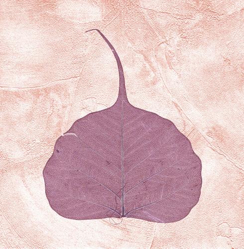 Purple Leaf I by Erin Rafferty