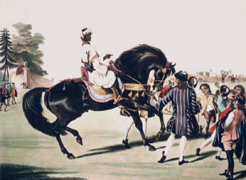 Godolphin Arabian, Scham (Restrike Etching) by William Webb