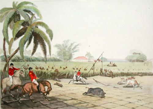 Beating Sugar Canes for a Hog (Restrike Etching) by Samuel Howitt