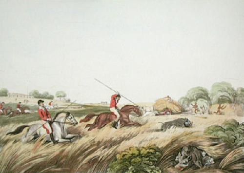 The Chase after a Hog (Restrike Etching) by Samuel Howitt