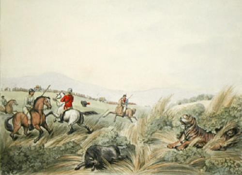Hog hunters - tigress and cubs (Restrike Etching) by Samuel Howitt