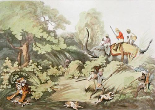 Shooters Surprising a Tiger (Restrike Etching) by Samuel Howitt