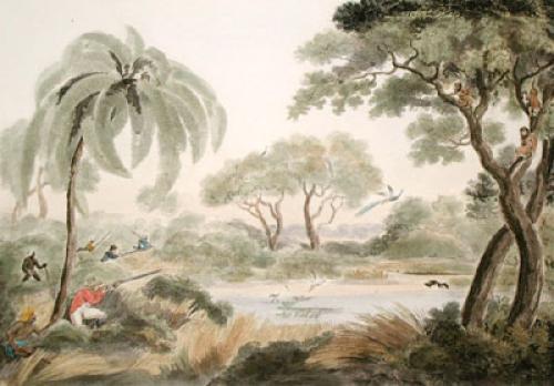 Peacock Shooting (Restrike Etching) by Samuel Howitt